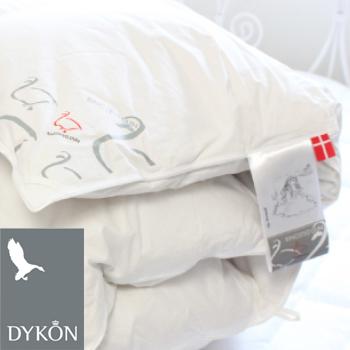 【DYKON デュコン フェアリーテールズ 羽毛布団 シングルサイズ】fs04gm、
