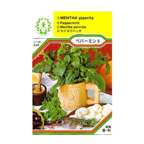 ペパーミント/ハーブの種・西洋野菜【ネコポス対応可能】
