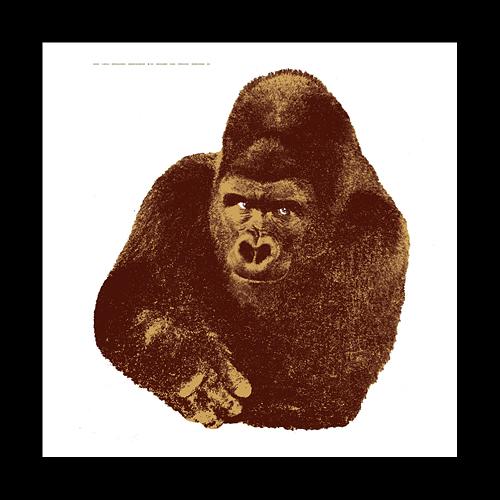 【最大1000円OFFクーポン|マラソン最大33倍 04/16(火) 01:59まで】DANESE(ダネーゼ)「Quindici il gorilla」