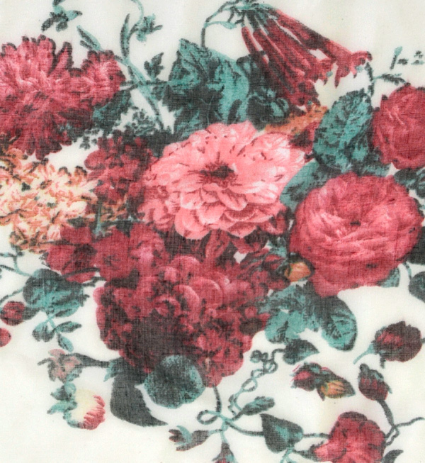 A light stall of the feel such as the gauze which described a rose in & nicety for an antique tick. Design pattern Lady's shawl rolled drapery thin UV measures ultraviolet rays measures flower floral design Rose stall ◆ garden Rose gauze stall
