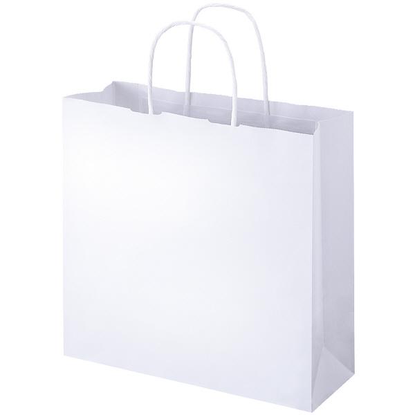 贈り物のお届けや持ちかえり用のシンプルな紙袋 最新アイテム 丸紐手提げ袋 白 M 超美品再入荷品質至上