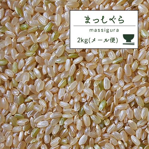 米 30kg 送料無料 人気 お米 玄米【30年産 青森県産 まっしぐら 玄米30kg】玄米 30キロ 精米無料