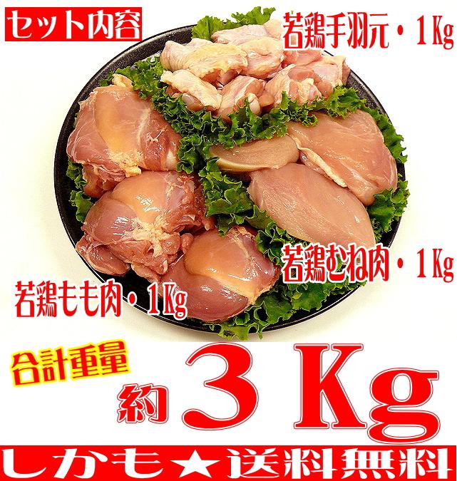 タイムセール ☆絶品鶏を堪能 大人気! いい肉屋 九州産 若鶏三昧お試しセット 合計約3Kg 送料無料 福袋