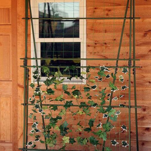 自由設計 本格 緑のカーテン グリーンカーテンキット 2面タイプ 120×240cm 【ガーデニング・DIY・防殺虫 レビュー投稿で次回使える2000円クーポン全員にプレゼントガーデニング・花・植物・DIY】