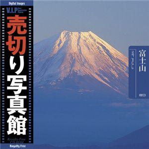 写真素材 VIP Vol.38 富士山 Mt. Fuji 売切り写真館 トラベル AV・デジモノ パソコン・周辺機器 素材集 レビュー投稿で次回使える2000円クーポン全員にプレゼント