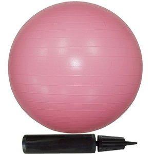 【10個セット】エクササイズボール 55cm ピンク ダイエット・健康 健康器具 その他の健康器具 レビュー投稿で次回使える2000円クーポン全員にプレゼント