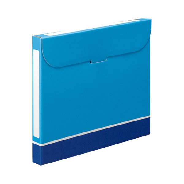10000円以上送料無料 (まとめ) TANOSEE ファイルボックス A4 背幅32mm 青 1パック(5冊) 【×10セット】 生活用品・インテリア・雑貨 文具・オフィス用品 ファイルボックス レビュー投稿で次回使える2000円クーポン全員にプレゼント