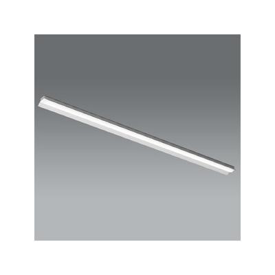 レビュー投稿で次回使える2000円クーポン全員にプレゼント 遠藤照明 LEDベースライト 《LEDZ SDシリーズ SOLID TUBELite》 110Wタイプ 直付タイプ 反射笠付形 高効率省エネタイプ 13500lmタイプ Hf86W×2灯高出力型器具相当 ナチュラルホワイト色 非調光タイプ ERK9819W+RAD-