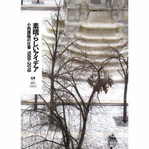 オムニバス/素晴らしいアイデア 小西康陽の仕事1986-2018(完全生産限定盤)