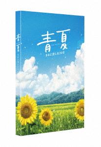 青夏 きみに恋した30日 豪華版(Blu-ray Disc)