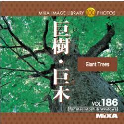 マイザ MIXA Image Library Vol.186「巨樹・巨木」
