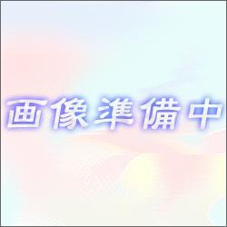 アイコム リチウムイオンバッテリーパック BP-220N