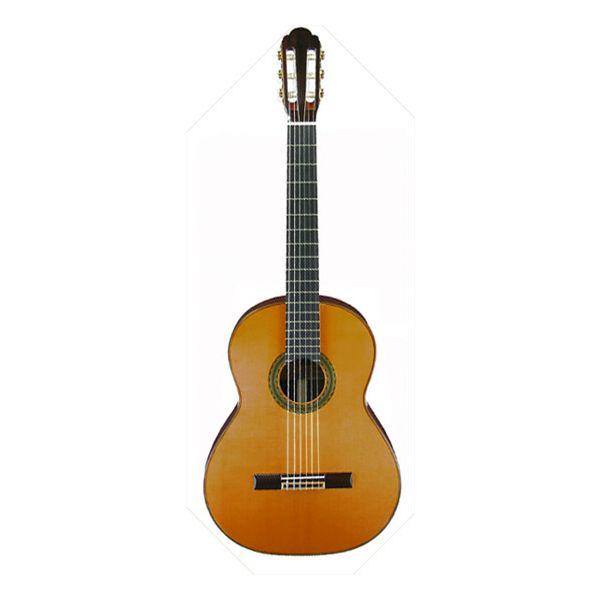 ARIA アリアクラシックギター A-100C セダー単板トップ【スタンドプレゼント】【送料無料】