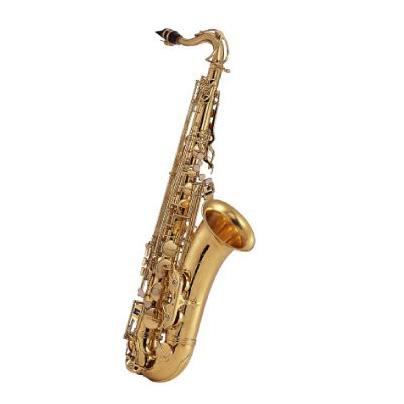 【送料無料】J.Michael TN-900 テナーサックス 【管楽器初心者】