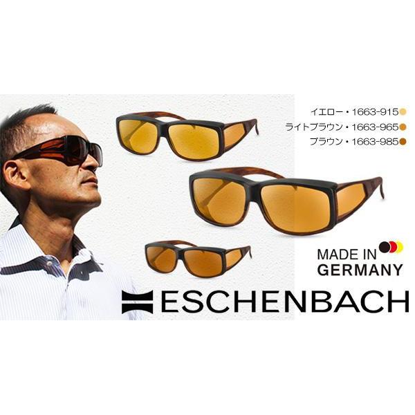 ESCHENBACH(エッシェンバッハ) エッシェンバッハ ウェルネス・プロテクト オーバーサングラスタイプ 大 レンズ色ブラウン・1663-985 (1006748)【smtb-s】
