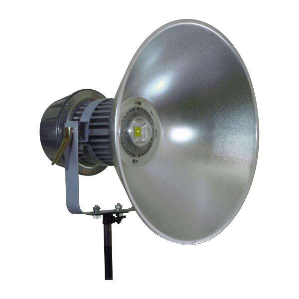 日動工業 メガライト100W 投光器型ワイド LEN-100PE/D-W【smtb-s】