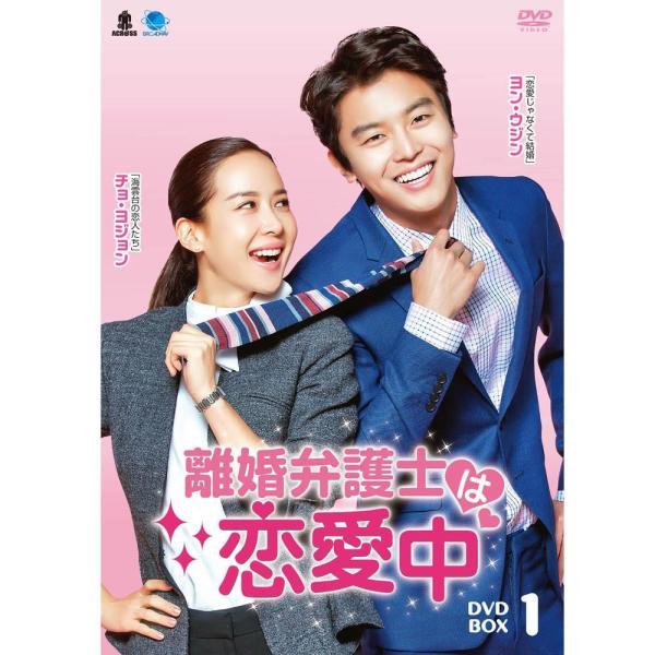 ブロードウェイ 韓国ドラマ 離婚弁護士は恋愛中 DVD-BOX1【smtb-s】