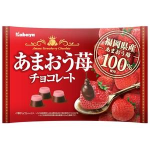 メーカー直送 送料無料 カバヤ あまおう苺チョコレート155g 蔵 入数:12