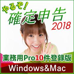 山屋商店 やるぞ!確定申告2018 業務用Pro 10件登録版 for Hybrid[WIN&MAC](RI804C313)【smtb-s】