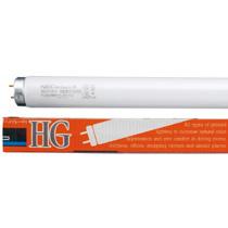 NECライティング 直管蛍光灯 《ライフルック HG》 ラピッドスタート形 40W 3波長形電球色 FLR40SEX-L/M-HG【smtb-s】