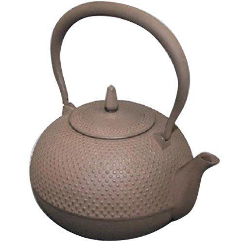池永鉄工 鉄瓶 梔子 小 茶 (1275257)【smtb-s】