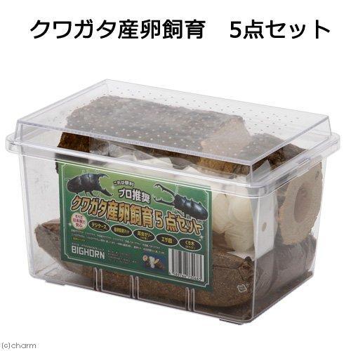 限定タイムセール 送料無料 MIKU 日本製クワガタ産卵飼育セット 予約