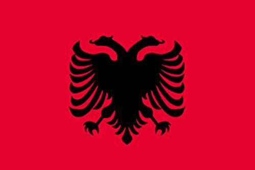 のぼり屋工房 N国旗 アルバニア No.2 W1350×H900mm 22836 (1489165)【smtb-s】