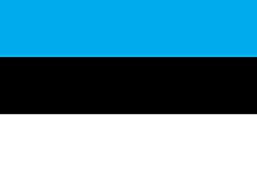のぼり屋工房 N国旗 エストニア No.2 W1350×H900mm 22912 (1489241)【smtb-s】