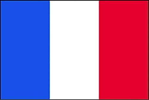 のぼり屋工房 N国旗 フランス・トリコロール No.2 W1350×H900mm 23376 (1489705)【smtb-s】