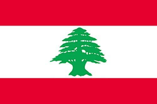 のぼり屋工房 N国旗 レバノン No.2 W1350×H900mm 23588 (1489917)【smtb-s】