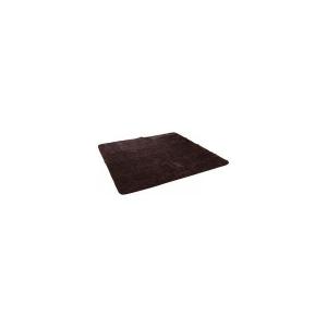 送料無料 イケヒコ コーポレーション ラグ カーペット 2畳 フィラメント フィリップ 半額 約185×185cm 期間限定で特別価格 ブラウン ホットカーペット対応 無地