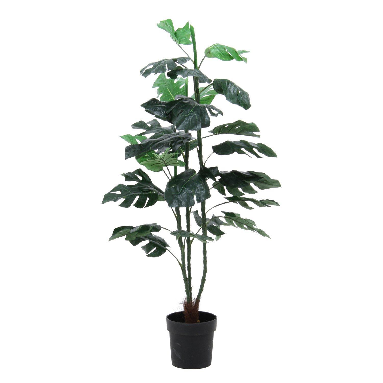 送料無料 不二貿易 Fujiboeki 観葉植物 情熱セール スプリット 52690 定番スタイル 1479943 32