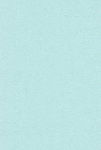 お気に入 送料無料 エスケント 100マイ お得クーポン発行中 カラー ウスミズイロ NC8-110