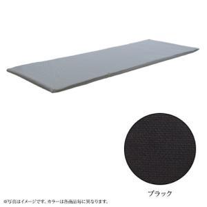 オーシン ファインエアー450 ブラック D