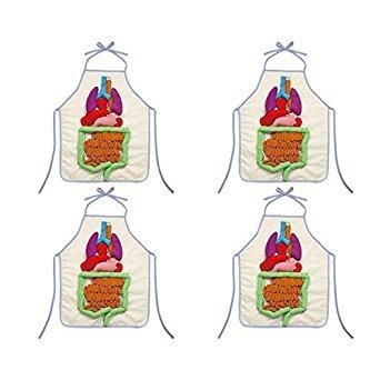 アーテック 内臓の大きさ説明エプロン(4個組)【smtb-s】