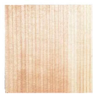 【まとめ買い10個セット品】天然杉懐紙 (100枚入) 3寸