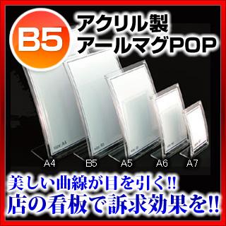【まとめ買い10個セット品】アールマグPOP 30883 B5サイズ(CML-54)