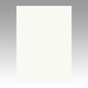 【まとめ買い10個セット品】ニューカラーR 四ツ切 縦542×横392mm 4NCR-152 ミルク 100枚 文運堂【 事務用品 デザイン用品 画材 色画用紙 】【ECJ】