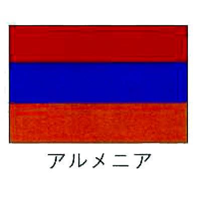 【業務用】旗 世界の国旗 アルメニア 120×180 【 キャンセル/返品不可 】