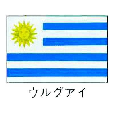 【業務用】旗 世界の国旗 ウルグアイ 70×105 【 キャンセル/返品不可 】 【 送料無料 】