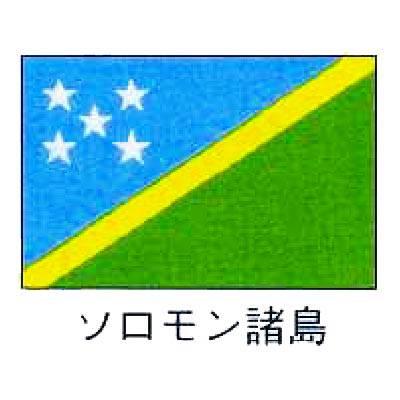 【業務用】旗 世界の国旗 ソロモン諸島 90×135 【 キャンセル/返品不可 】 【 送料無料 】