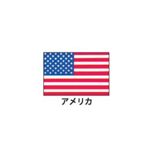 旗(世界の国旗) エクスラン国旗 アメリカ 取り寄せ商品