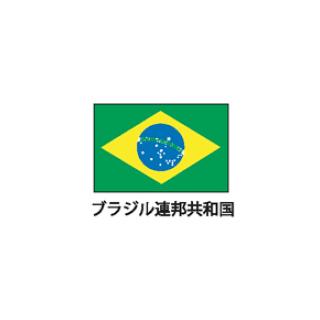 旗(世界の国旗) エクスラン国旗 ブラジル 取り寄せ商品