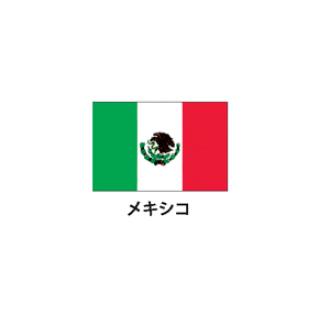 旗(世界の国旗) エクスラン国旗 メキシコ 取り寄せ商品