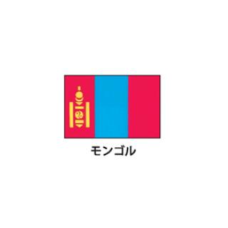 旗(世界の国旗) エクスラン国旗 モンゴル 取り寄せ商品