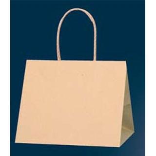 【まとめ買い10個セット品】 【業務用】手堤袋 Pスムース 25-19(25枚入)未晒無地