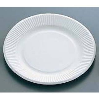 【まとめ買い10個セット品】紙皿(100枚入)デラックスホワイト 05056 9号 【ECJ】