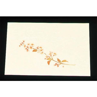【まとめ買い10個セット品】 【業務用】尺三 懐石まっと クリーム(100枚入)WSS-4 桜