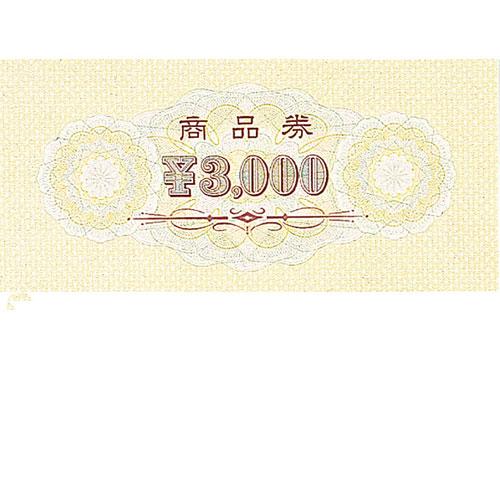 【まとめ買い10個セット品】 商品券 ¥3000 100枚【販促用品 ポスター POP 店舗備品】【ECJ】