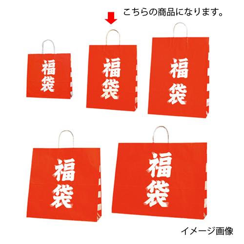 【まとめ買い10個セット品】 福袋 32×11.5×41 50枚【店舗什器 小物 ディスプレー 店舗備品】【ECJ】